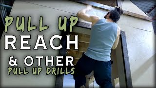 Pull Up Reach | Pull Up Hold | Jumping Pull Up | Natural Movement Skills