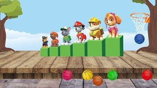 Paw Patrol Learning Colors with Basketball Balls. Learning Videos for Toddlers