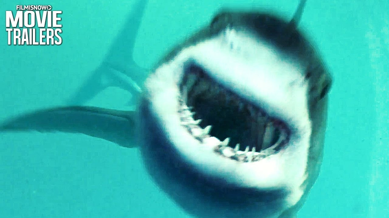 Sharks attack in open water 3 cage dive trailer youtube - Open water 3 cage dive ...