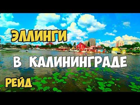 КАЛИНИНГРАД. ЭЛЛИНГИ РЕЙД.