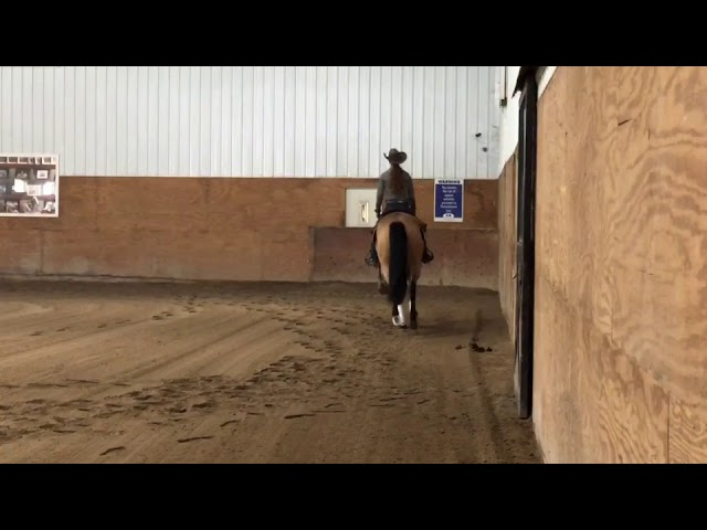 Sold Walla Lizzy Islide Performance Horses