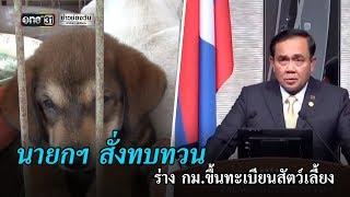ค้านร่าง กม.ให้จ่ายภาษีขึ้นทะเบียนหมา-แมว | ข่าวช่องวัน | one31
