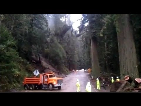 Giant redwoods torn down by mudslide in Northern California - Truthloader