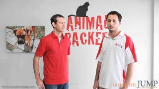 Business Start Up: Miami Organic Pet Food Store - Animal Crackers