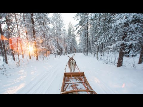 Santa Claus Reindeer Resort In Santa Claus Village In Rovaniemi Lapland Finland