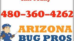 Bed Bugs Scottsdale AZ (480)360-4262