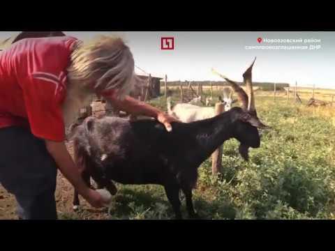 знакомства для секса в городе куйбышеве