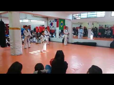 cinturon verde azul karate