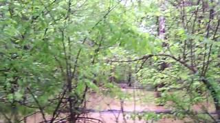 Wooden Bridge Over Swollen Panther Creek