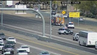 RAW VIDEO: Traffic backup as DPS and fire crews round up loose dogs on I-17 in Phoenix
