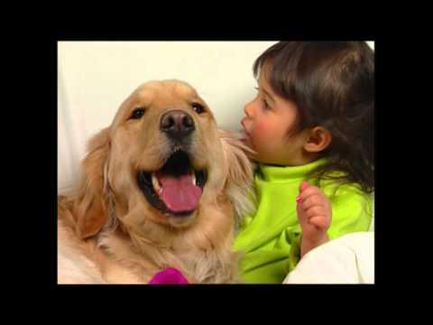 baby-dolittle:-neighborhood-animals,-part-1-|-animal-videos-for-kids-|-baby-einstein