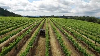 Happy National Wine Day from Jordan Vineyard & Winery