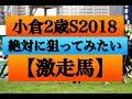 小倉2歳ステークス2018(絶対に狙ってみたい激走馬】軸にはもってこい!3連勝…