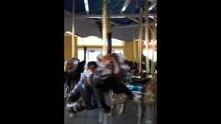 Carousel at the Turtle Back Zoo - early 2012 - part2