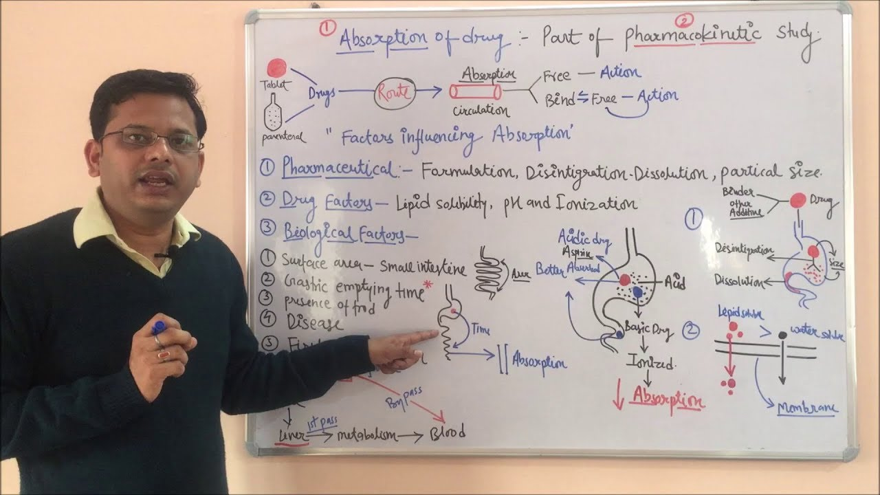 Pharmacokinetic  Part 01