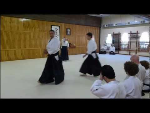 Tro's 1st Kyu Test in Aikido
