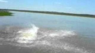 panico no lago ii