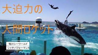 鴨川シーワールド シャチのショー(シャチパフォーマンス) thumbnail