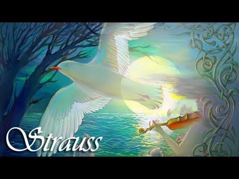 Strauss Classical Music for Studying, Concentration, Relaxation | Study Music | Instrumental Music
