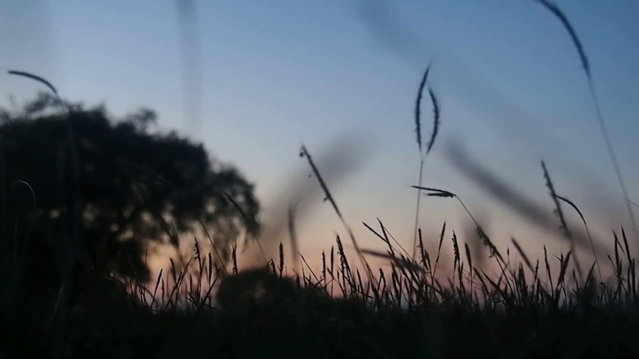 Tanyakan Pada Rumput Yang Bergoyang Youtube