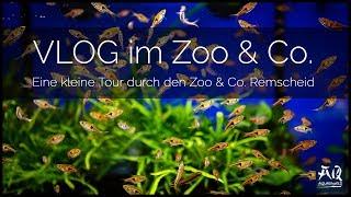 VLOG IM ZOO & CO. REMSCHEID | Bekomme ich Fische? | AquaOwner