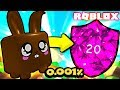 Chocolate Bunny Pet MAX LEVEL and MAX ENCHANTED in Roblox Bubble Gum Simulator