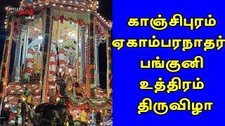 காஞ்சிபுரம் ஏகாம்பரநாதர் பங்குனி உத்திரம் திருவிழா | Kanchipuram Egambaranathar | Britain Tamil