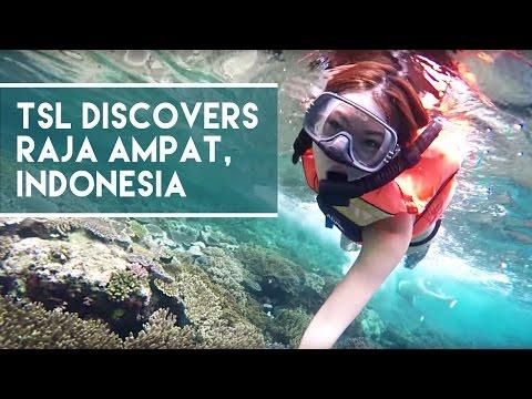 Raja Ampat - Indonesia's Secret Island Paradise - TSL Discovers Indonesia 2015: Episode 1