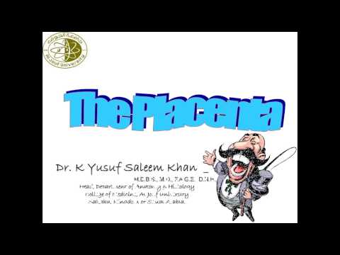 Embryology Lecture on The  Placenta ............. by Dr. Yusuf