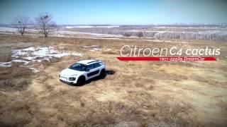 Тест-драйв Citroen C4 Cactus // Полный обзор Citroen Cactus от DreamCar // Экономичный...