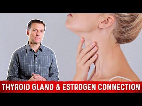 The Iodine-Estrogen Connection: MUST WATCH!