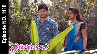 Swathi Chinukulu | 1st April 2017 | Full Episode No 1116 | ETV Telugu