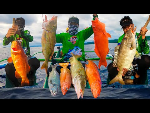 Fishing Expedition | I Caught Beautiful First Class Fishes | Vertical Jigging In The Philippines