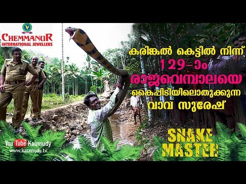 WOW! Vava Suresh rescues his 129th King Cobra from a stone quarry | Snakemaster | Latest Episode