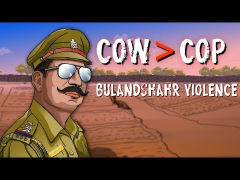 Bulandshahr violence: cow politics, lynching and elections, create a deadly cocktail.