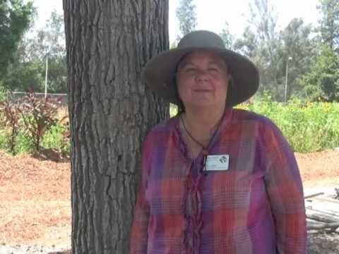 John Muir HS Farm Part 2 - Doss Jones Interview