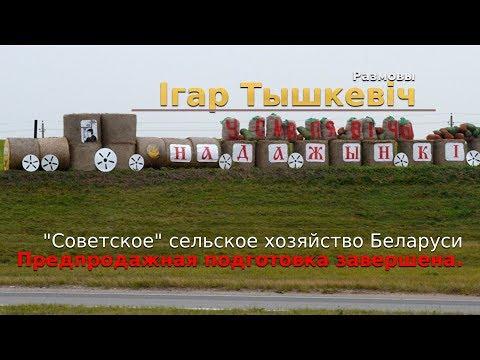 Когда пойдёт с молотка сельское хозяйство Беларуси