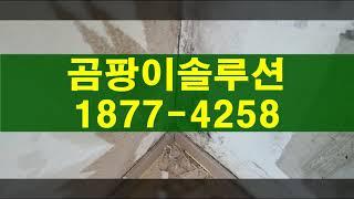 벽 곰팡이 페인트, 안방곰팡이제거 하는 과정
