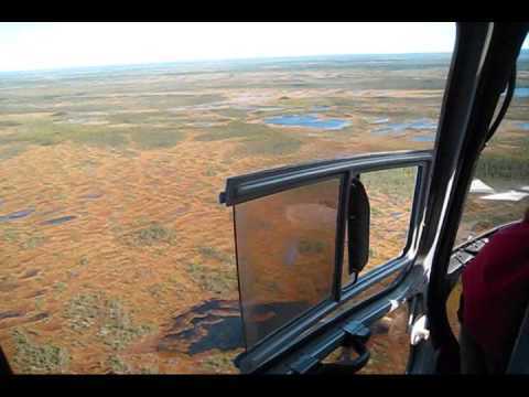 Helicopter Flight in the James Bay Lowlands, Ontario