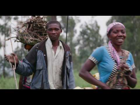 Virunga Gorilla Exploration