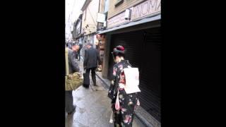 長唄『昔話たぬき』(HD)Kyoto Ponto-cho Maiko 純野静流 検索動画 30