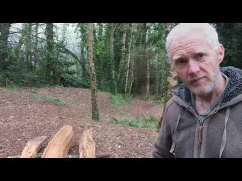 Making a green oak bench at Sharpham