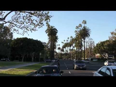 The Beverly Hills VIP Tour