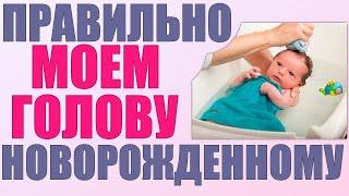 КАК МЫТЬ ГОЛОВУ НОВОРОЖДЕННОМУ Какими средствами и как часто нужно мыть голову ребенку до года
