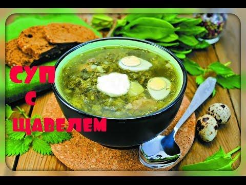 Зеленые супы, рецепты с фото, суп из щавеля, ботвинья
