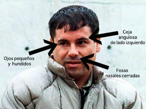 Image Result For El Chapo