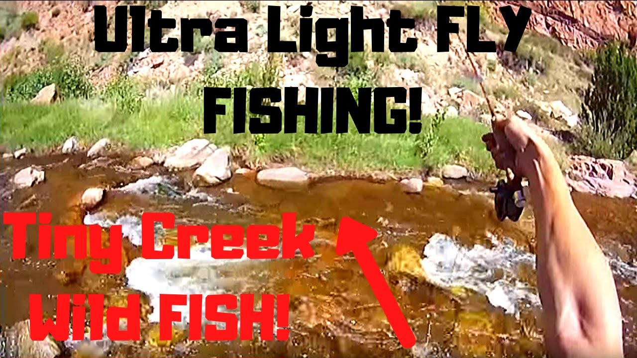 Fly fishing colorado a small creek august 2015 youtube for Small creek fishing