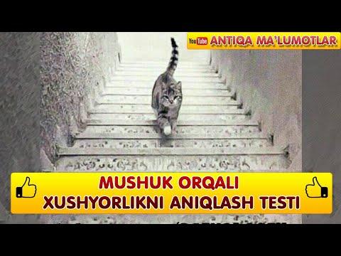 Psixologik test: Xushyorlikni tekshirish uchun ajoyib test | Хушёрликни текшириш учун тест