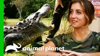 Alligator Catch Inspires A New Volunteer To Join The Everglades Holiday Park | Gator Boys