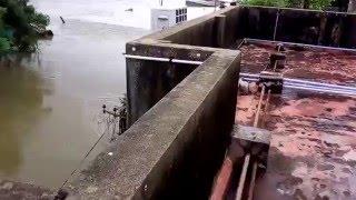 Thiru Nagar, Ashok nagar, chennai Houses flooded 2015